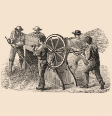 threshing-machine-1784